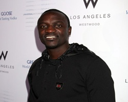 R&B Singer Akon's 'Fan Throwing' Hearing Delayed