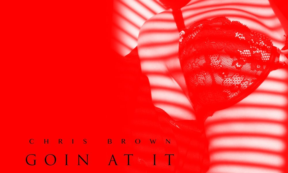 chris-brown-goin-at-it-2