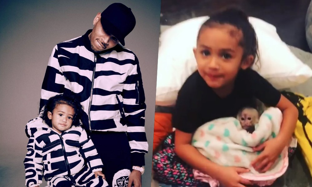 chris-brown-royalty-pet-monkey-2