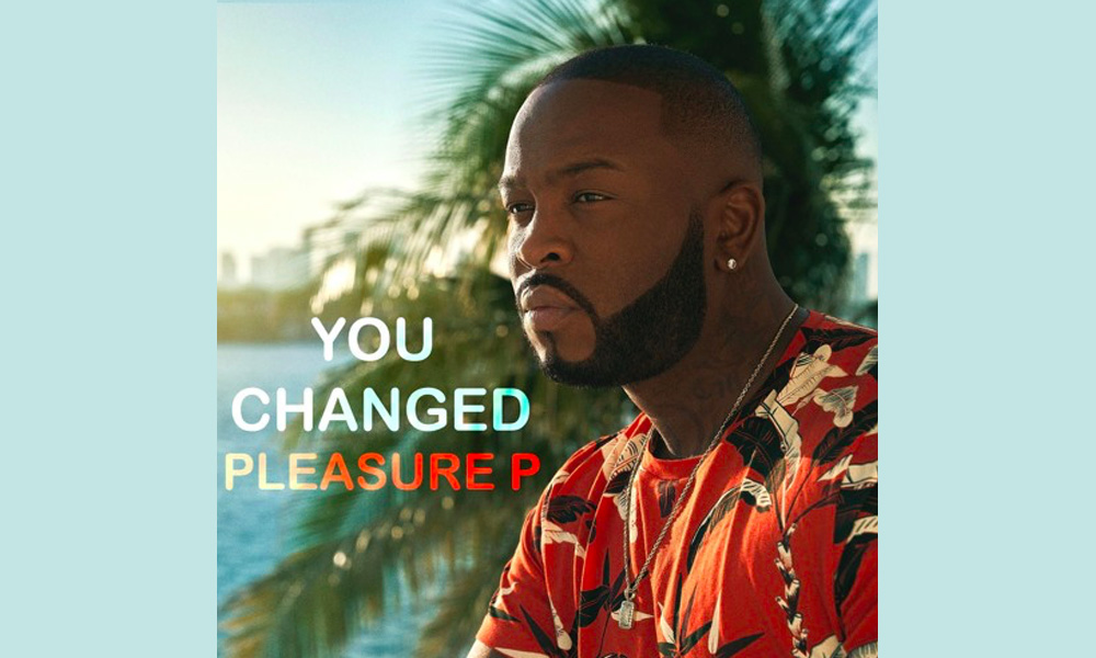 pleasure-p-you-changed